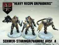 axis heavy grenadiers